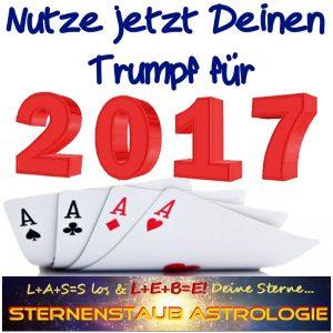 Dein Trumpf für 2017 Angebot